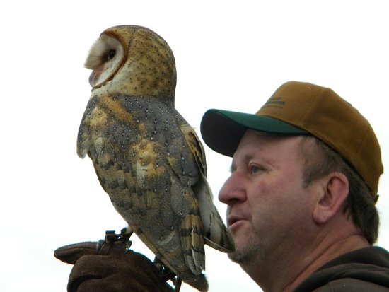 Cheney, KS: Ken with his owl