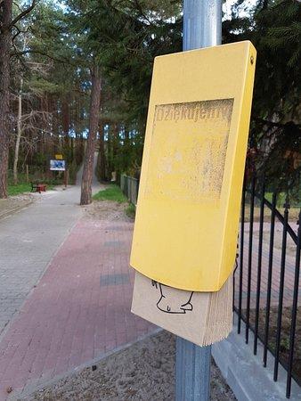 Miedzywodzie, Polandia: 20180501_071916_large.jpg