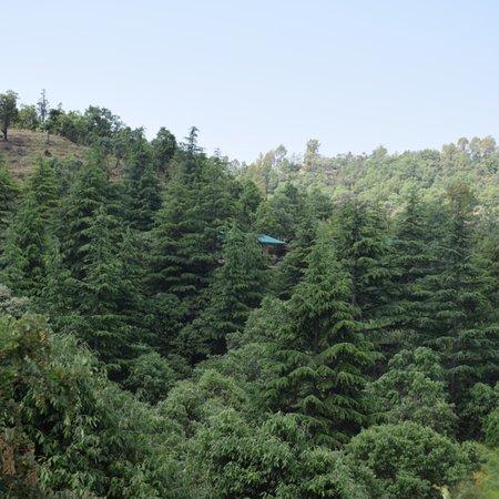 Shitlakhet, India: photo5.jpg
