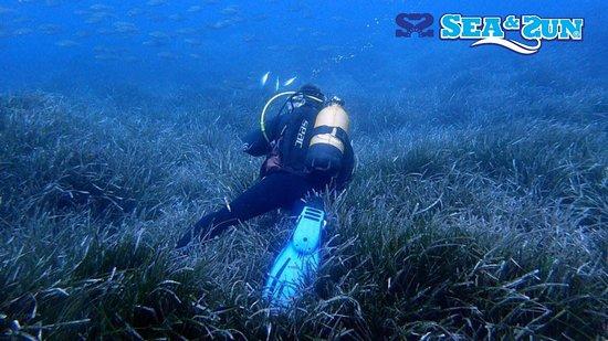 La Isleta, สเปน: Centro de buceo en Cabo de Gata SEA&SUN Diving Center inmersión en Punta Isleta