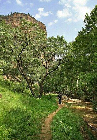 Lorestan Province, Iran: Shiraz Canyon
