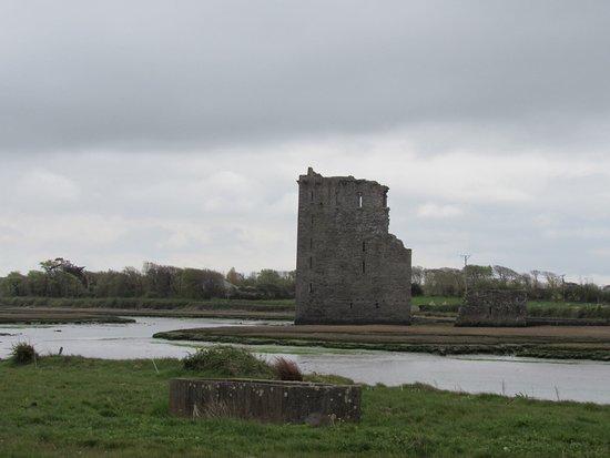 Ballylongford, Ireland: Castle