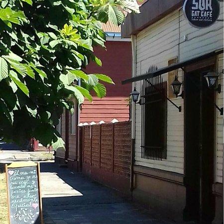Lautaro, ชิลี: SurGatCafe