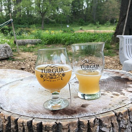 Turgua Brewing: This place is so worth a stop. Friendly, quaint, excellent atmosphere in the beautiful NC mounta