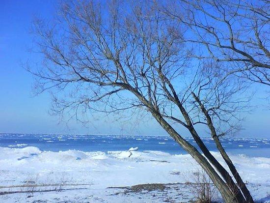 Wilson, NY: Winter View