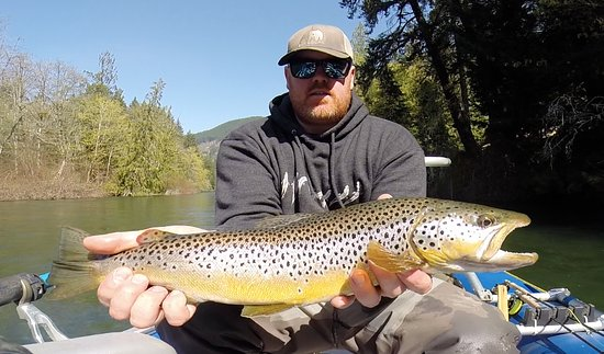 Shawnigan Lake, Kanada: streamer fishing on the Cowichan river