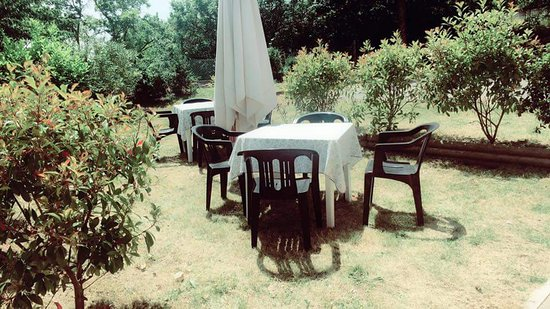 Giardino - Picture of Bar Trattoria Pizzeria Ghita Elena ...