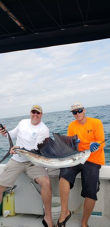 Bent Charters Fishing: Sailfish