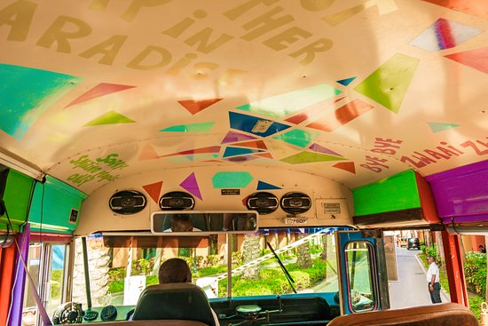 Bounty Adventures: Creative colorful bus!