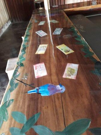 El Mirador del Aguacate: El rancho del mirador y la unica barra de la sona