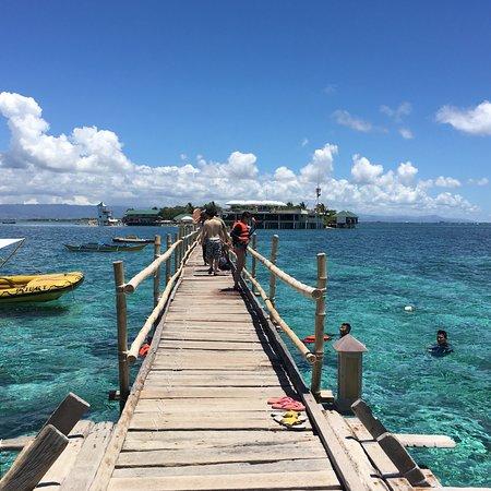 Nalusuan Island Marine Sanctuary: photo0.jpg