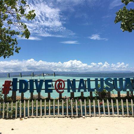 Nalusuan Island Marine Sanctuary: photo2.jpg