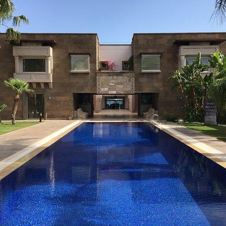 Casa Dell'Arte: photo1.jpg