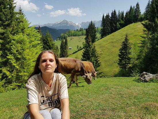 Fundata, Romênia: IMG-20180501-WA0026_large.jpg