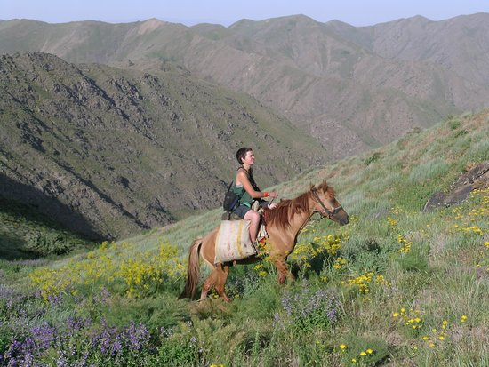 Jizzakh Province, Uzbekistan: horse riding in  Nuratau Mountains