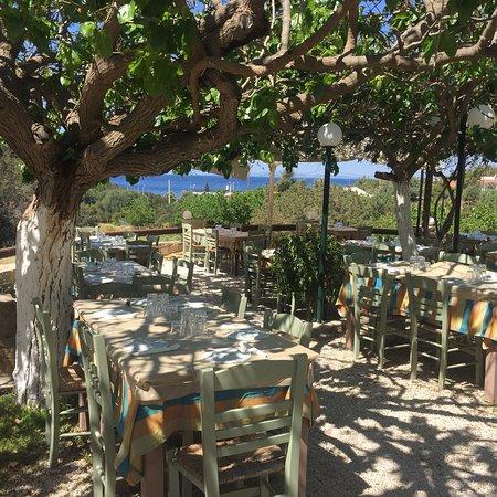 Palaia Fokaia, กรีซ: Apomero