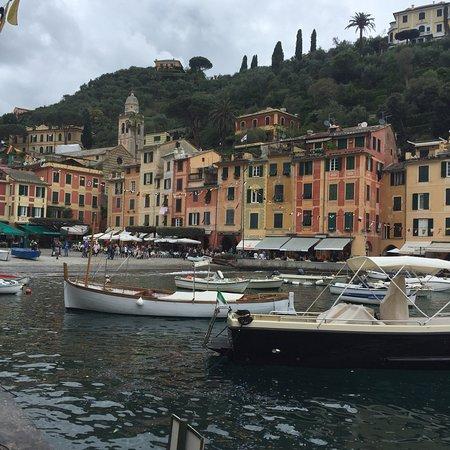 Area Marina Protetta Portofino: photo1.jpg