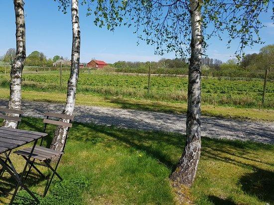 Eslöv, Zweden: TA_IMG_20180505_134929_large.jpg