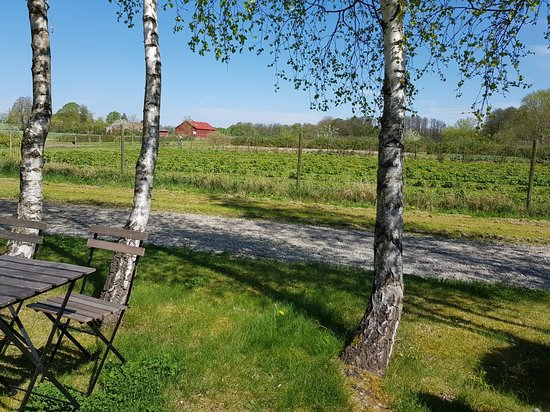 Eslöv, Sverige: TA_IMG_20180505_134929_large.jpg