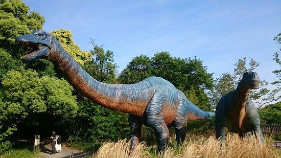 Dino Adventure Nagoya