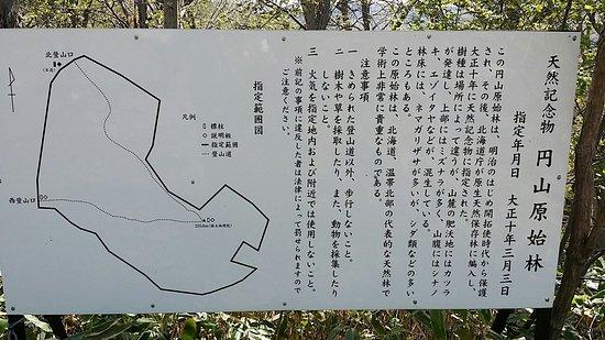 Maruyama Genshirin
