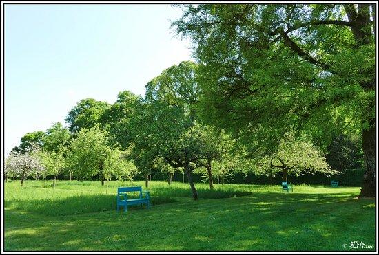 Nohant-Vic, France: Dans les jardins