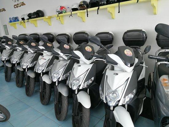 Autonoleggio Calise - Bike Rentals