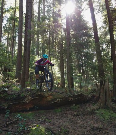 explore the trails of North Vancouver