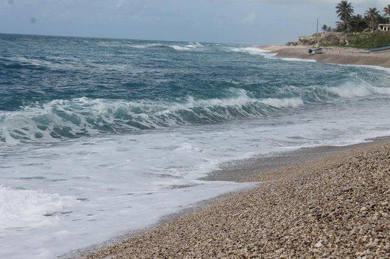 Los Patos, جمهورية الدومينيكان: IMG_0065_1082x720_large.jpg