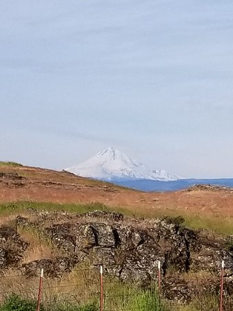 Dallesport, WA: 20180504_080221_014_large.jpg