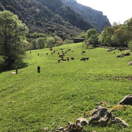 Ason, สเปน: photo1.jpg