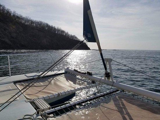Blue Dolphin Sailing : Catamaran