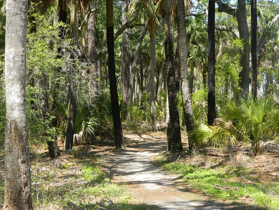 Hunting Island State Park Campground: Lagoon trail