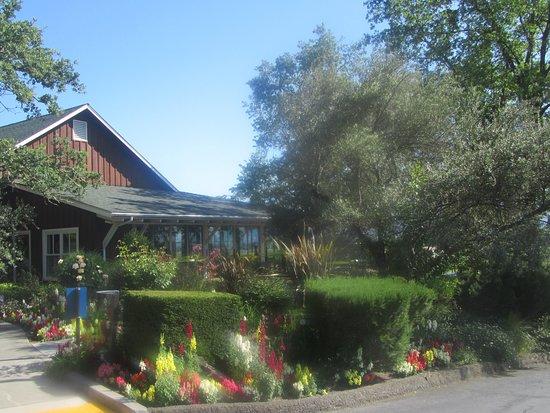 Rutherford, CA: Mumm, Napa Valley, Ca