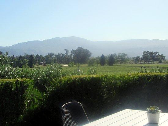 Rutherford, CA: Views of Napa Valley from Patio, Mumm Napa