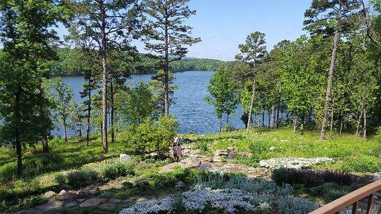 Garvan Woodland Gardens: 20180505_105243_large.jpg