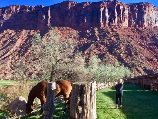 Red Cliffs Lodge: Outside our room