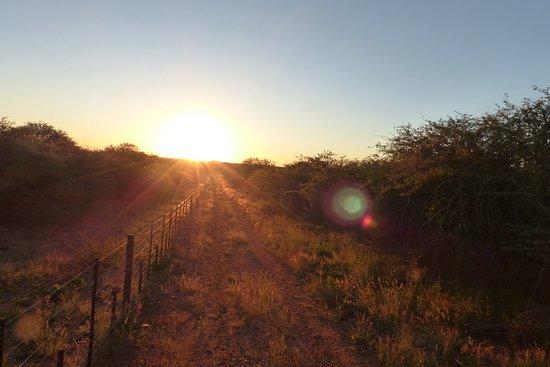 Okahandja, ناميبيا: P1150526_large.jpg