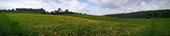 Landgoed Kasteel Altembrouck: IMG_20180501_121324_large.jpg
