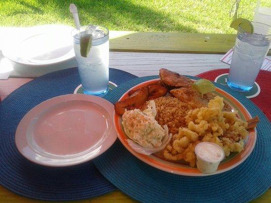 Village 1831 Restaurant: Crack Conch Dinner w/ lemonade.