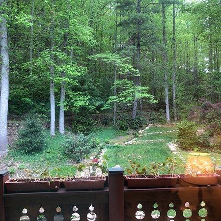 Whittier, Kuzey Carolina: photo0.jpg