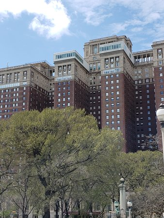 Hilton Chicago: Annmarie Short