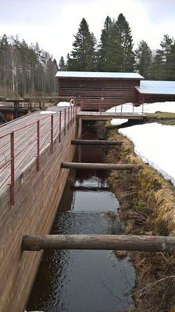 Ilomantsi, ฟินแลนด์: Vettä joka puolella.
