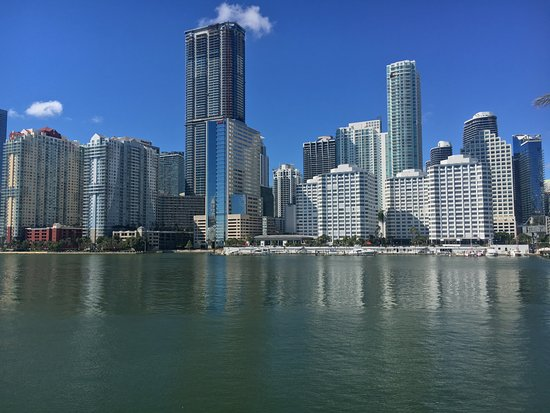 Mandarin Oriental, Miami: Vista desde la piscina