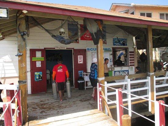Seagrape Plantation Resort: Full service Dive Shop