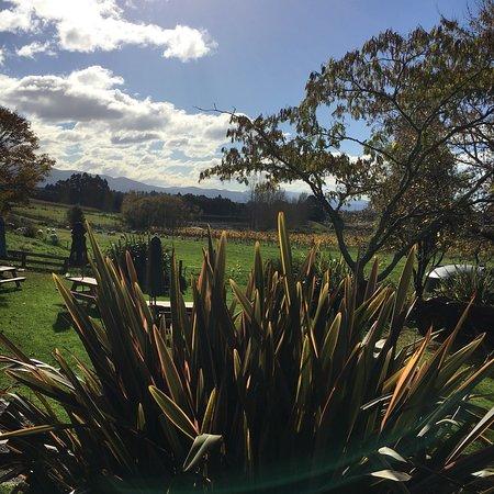 Upper Moutere, Selandia Baru: photo0.jpg