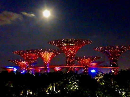 OCBC Skyway: At Night
