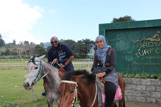 Ragama, ศรีลังกา: Horse riding in Nuwaraeliya