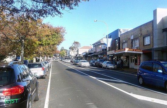 Parnell: Plenty of restaurants and shops