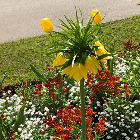 Caldecott Park: photo5.jpg